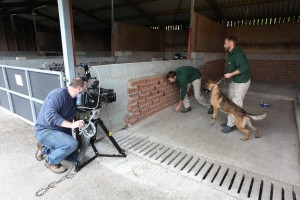 On location filming for Dog Detectives